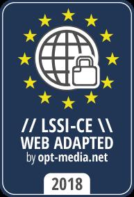 web adaptada LSSI